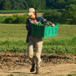 Organic Farmers Thrive During Pandemic