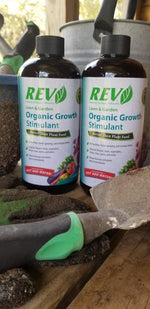 Organic REV 16oz 2-Pack Special