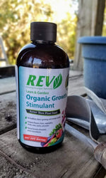 Organic REV 8 Ounce Bottle