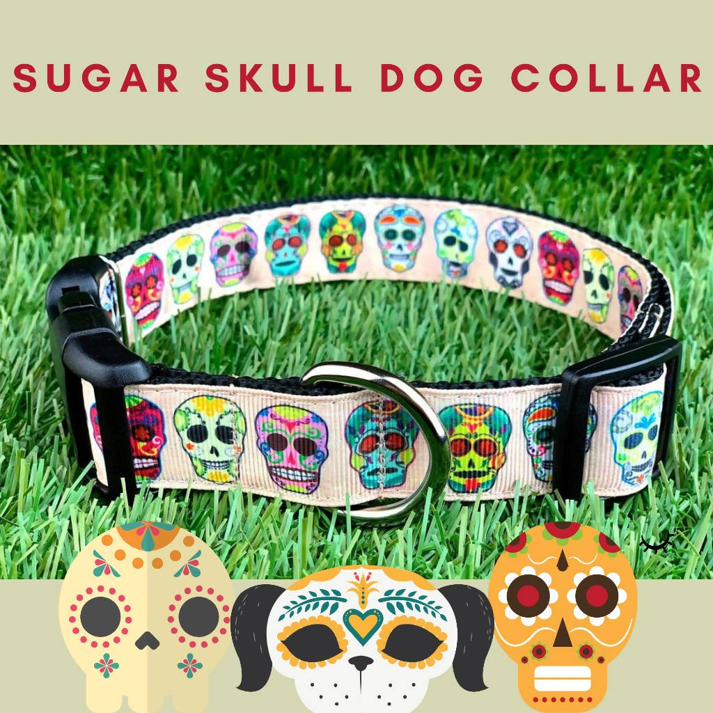 Tan Sugar Skull Dog Collar