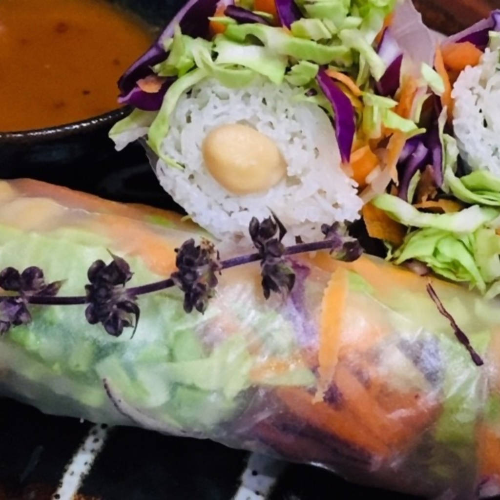 Thai Vegan Rainbow Salad Summer Rolls