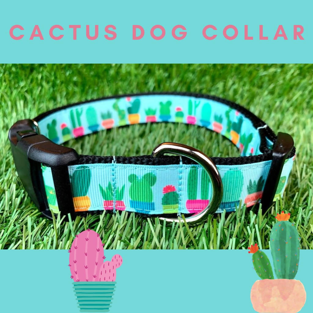 Teal Cactus Dog Collar