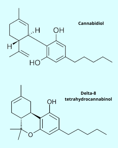 A model showing the similarities in the CBD molecule and the Delta-8-THC molecule.