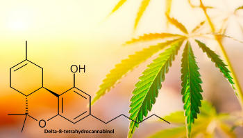 A model of Delta-8-THC's molecular structure and the natural hemp material its made from.