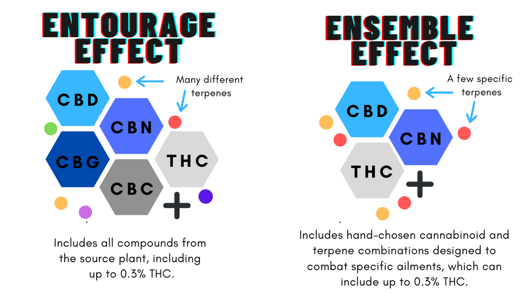 A visual comparison of the entourage effect and the ensemble effect.
