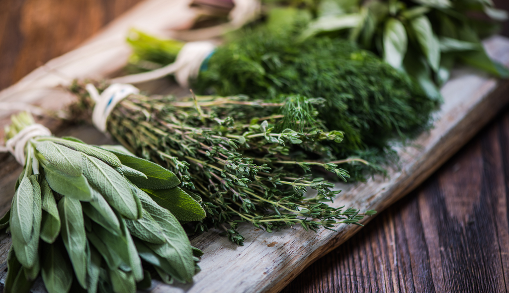 Various bundles of fresh herbs that can be used in cooking and to make extracts.