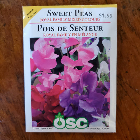 SWEET PEAS - ROYAL FAMILY MIX