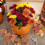 Mumpkin Centerpiece - Red, Orange, Yellow