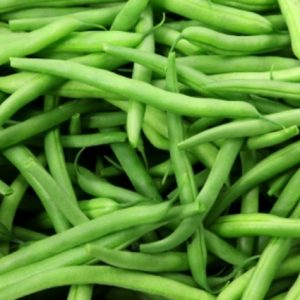 Organic Seed - Tendergreen Bean