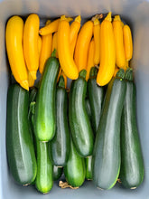 Load image into Gallery viewer, Organic Zucchini Squash, Yellowfin