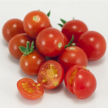 Load image into Gallery viewer, Organic Starter Plant: Tomato, Sweetie Cherry