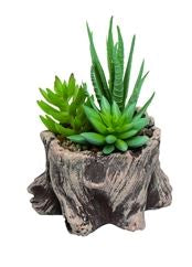 Faux Tree Trunk Succulents