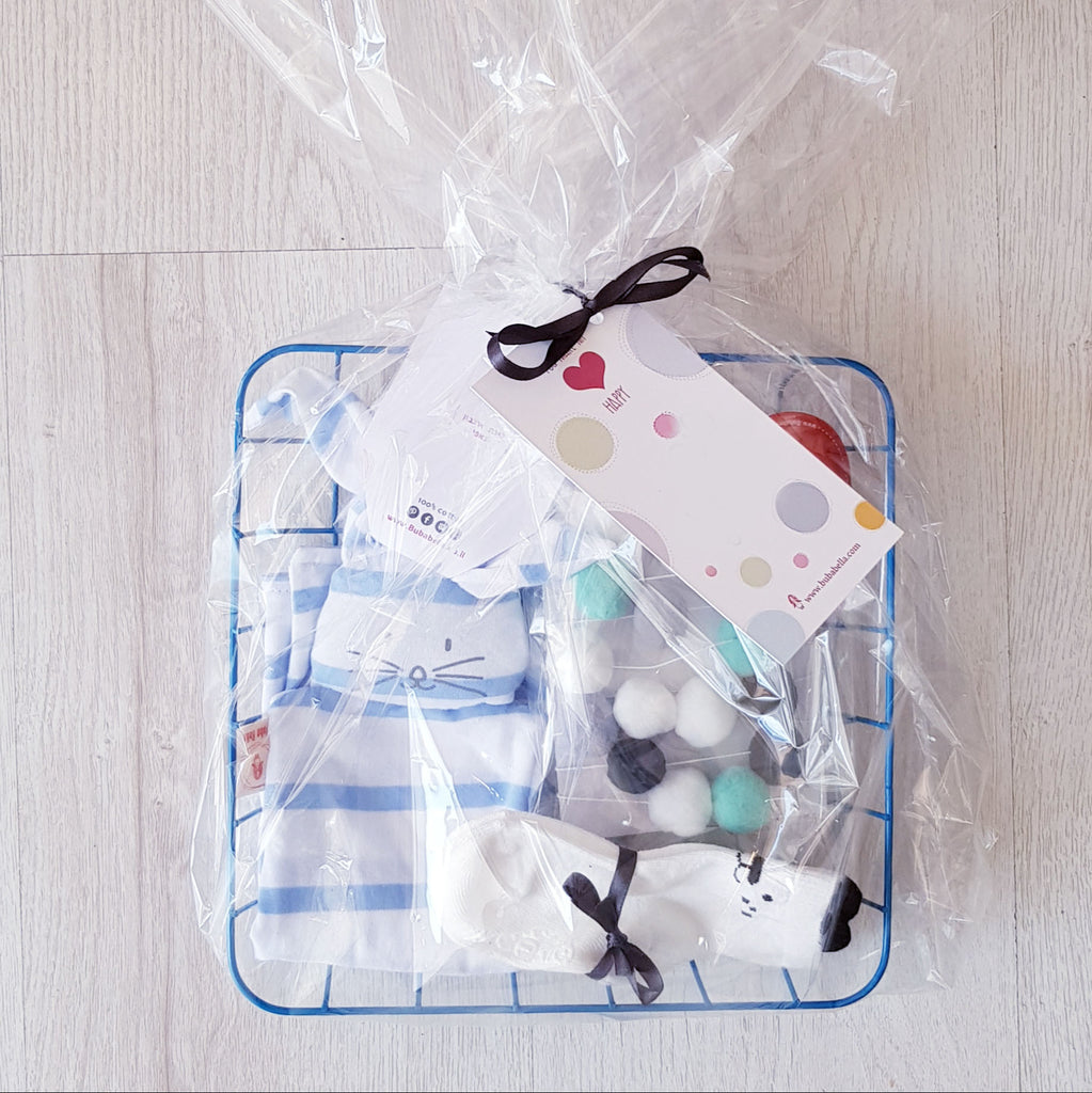 Sweet baby basket gift in blue