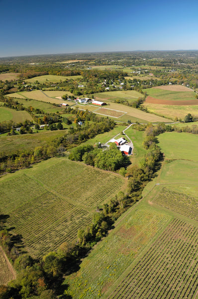 Aerial Photograph of Unionville Vineyards