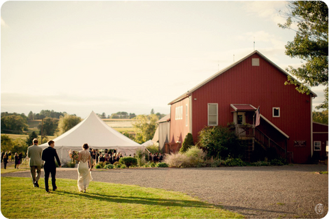 Celebrate Host Your Event At Unionville Vineyards