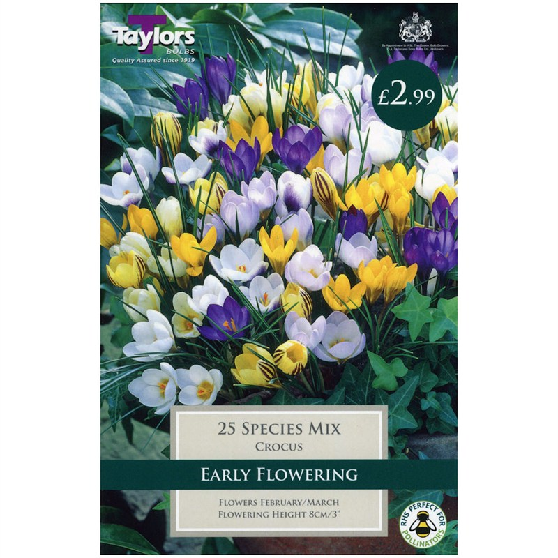 20 Species Mix Crocus Bulbs
