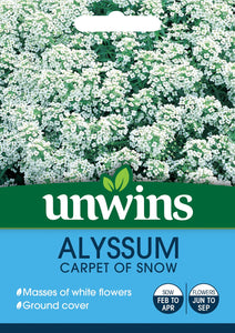 Alyssum Carpet Of Snow - Seeds