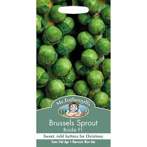 BRUSSELS SPROUT Brodie F1 - Seeds