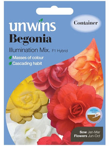 Begonia Illuminations Mix - Seeds