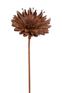 Rustic Aster Stake