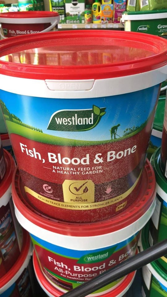 Fish, Blood & Bone