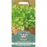 MIXED Lettuce Green Leaves - Seeds
