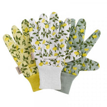 Load image into Gallery viewer, Multi-Task Sicilian Lemon Cotton Grips (Triple Pack)