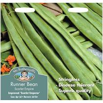RUNNER BEAN Scarlet Empire (Stringless) - Seeds