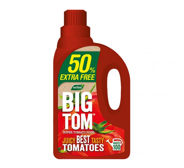 Westland Big Tom 50% Extra Free