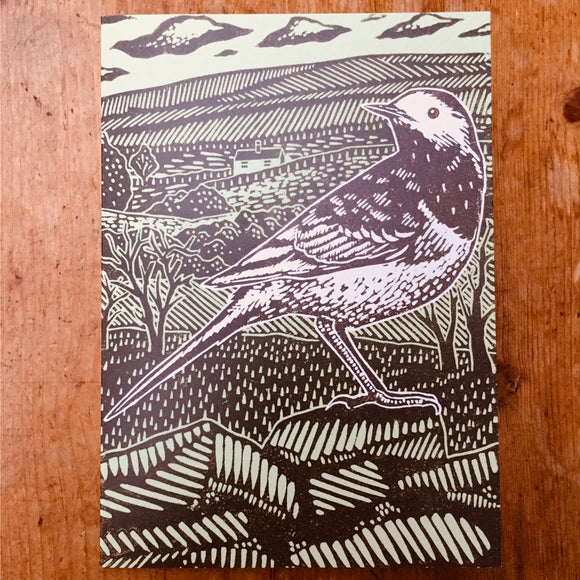'Pied Wagtail' Lino Art Card