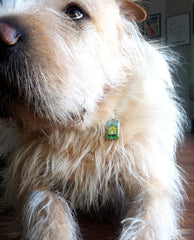 In Da House Pet ID Tag
