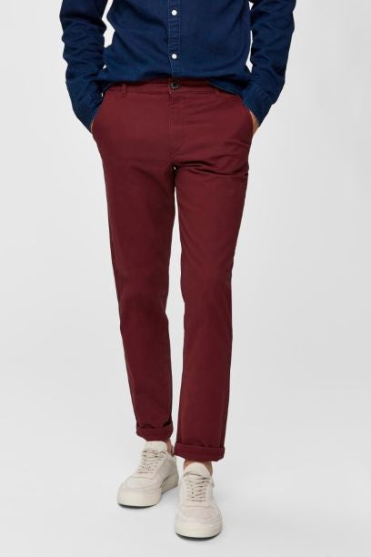 Selected Homme Straight Fit Chino - Burgundy