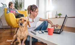 LTE Connectivity Solutions for Work-From-Home