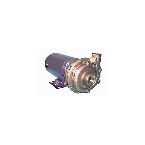 Oberdorfer 107MB-F25 Pump and Motor