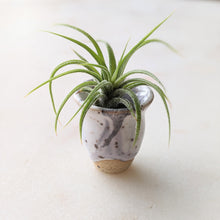 Load image into Gallery viewer, Tiny Marble Planter