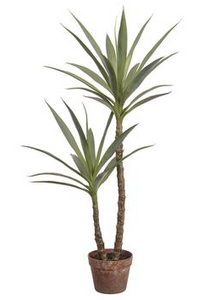"44""Yucca Tree In Plant Pot - Florals and Foliage"