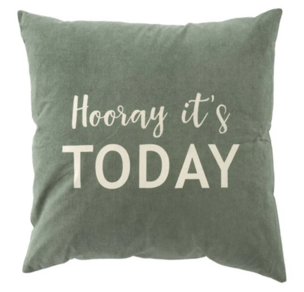 20x20 Hooray It's Today Pillow / Cushion - Everyday Textiles