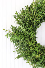 "Load image into Gallery viewer, 14"" Boxwood Wreath"