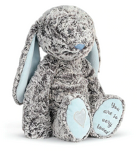 Load image into Gallery viewer, Benjamin Bunny Baby Plush