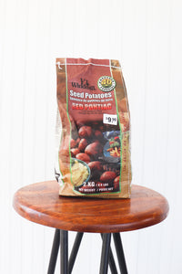 Seed Potato Red Pontiac 2kg - Seeds