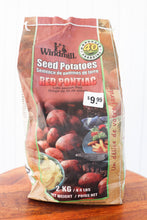 Load image into Gallery viewer, Seed Potato Red Pontiac 2kg - Seeds