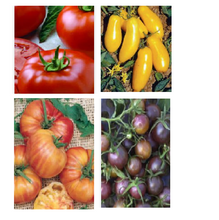Load image into Gallery viewer, Tomato Seeds