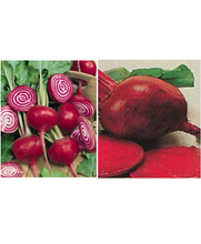 Load image into Gallery viewer, Beet Seeds