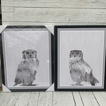 Load image into Gallery viewer, Owl Canvas Set of 2- Holiday Decor