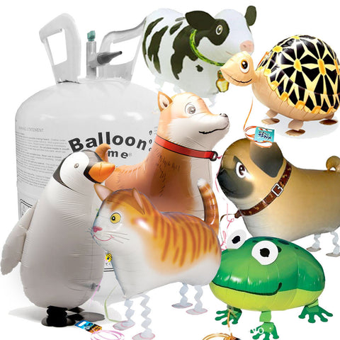 Disposable Helium and 9 Balloon Pet Package
