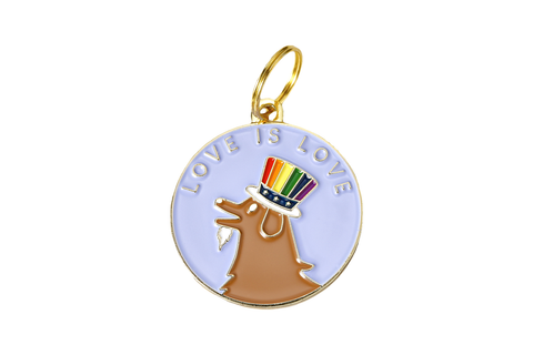 Pet ID Tag - Love is Love