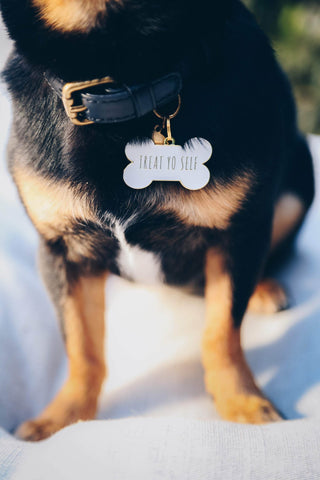 Pet ID Tag - Treat Yo Self - White
