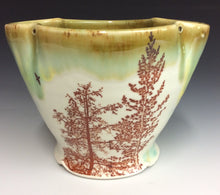 Load image into Gallery viewer, Jen Gandee- Bowl #38
