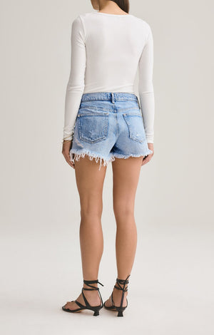 Agolde Parker Vintage Cut Off Shorts in Swapmeet