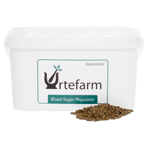 Urtefarm | Blood Sugar Regulator | Stabiliserer Blodsukkeret